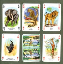 Kenyan Collectible playing cards African animals